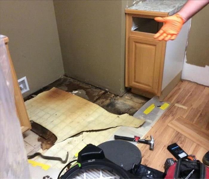 Kitchen with wet and moldy floor