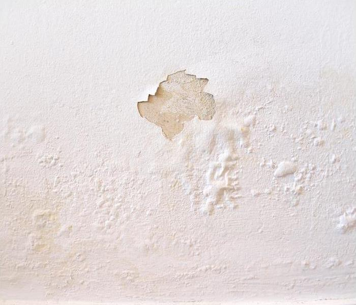paint bubbling and peeling from wall